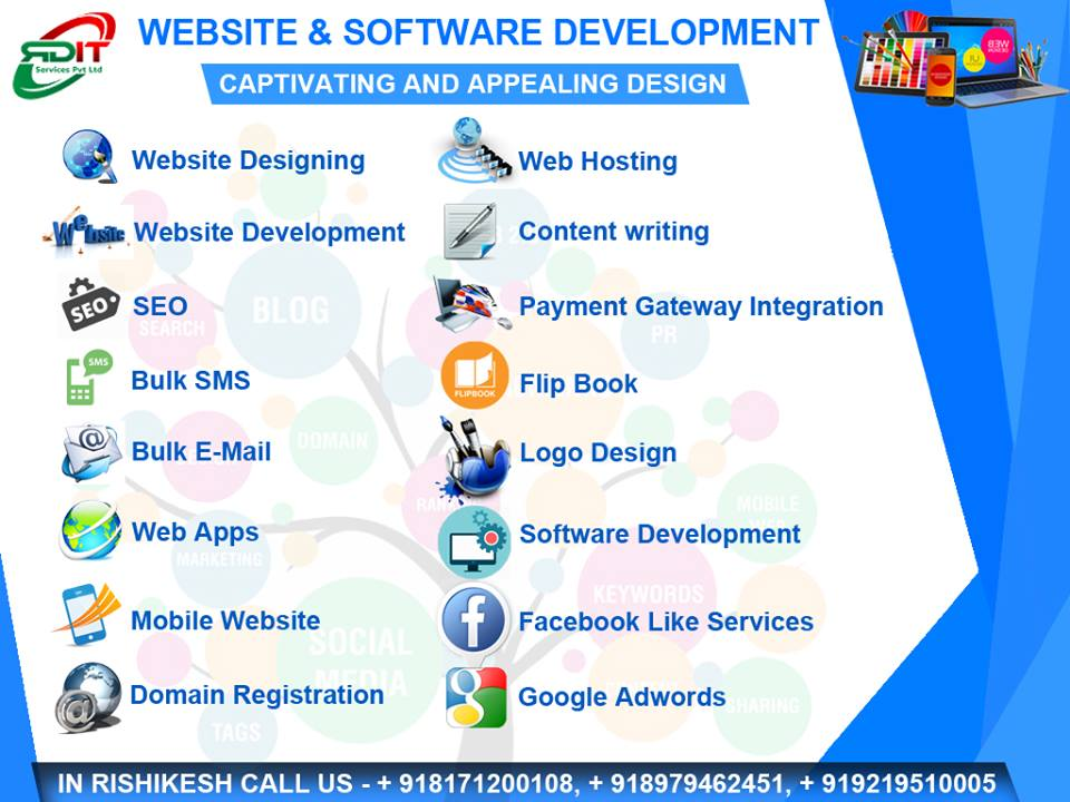 mohali website seo developer